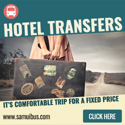 SamuiBus.com - Book Koh Samui Seatran transfer in just a few minutes!